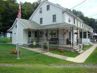 36 Sport Hill St Branchdale PA, 17923