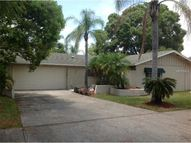 3472 Snowy Egret Ct Palm Harbor FL, 34683