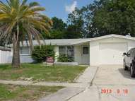 5423 Celcus Dr Holiday FL, 34690