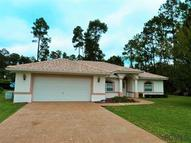 43 Point Of Woods Dr Palm Coast FL, 32164