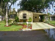 233 London Dr Kissimmee FL, 34746