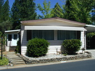 10252 Forest Springs Drive Grass Valley CA, 95949