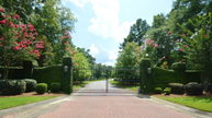 Lot 50 Sorrell Red Court Warrenville SC, 29851