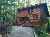 860 Cohutta Mountain Road Blue Ridge GA, 30513