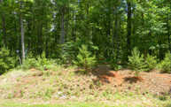 Lot12 Creekmont Crossing Lot 12 Mineral Bluff GA, 30559