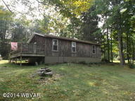 732 Lakeview Dr Muncy Valley PA, 17758