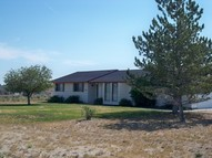 326 Flora Drive Spring Creek NV, 89815