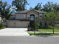 15619 Hampton Village Dr Tampa FL, 33618