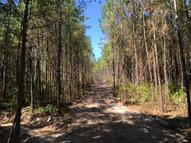 101.8 Acre Caney Church Rd. Lumberton MS, 39455