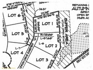 Lot 1 Jessica Way Poland ME, 04274