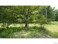 (Lot 4) State Route 55 Neversink NY, 12765