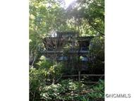 414 South Carolina Ter Montreat NC, 28757
