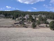 32623 Deep Forest Road Evergreen CO, 80439