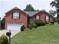 221 Priest View Drive Smyrna TN, 37167