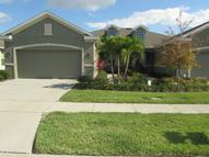 2216 Parrot Fish Dr Holiday FL, 34691