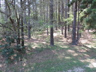 Lot 2b Riverwind Trail 2b Meigs GA, 31765
