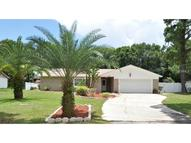 9502 W Cluster  Ave Tampa FL, 33615