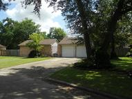 17306 Bitts Ct Crosby TX, 77532
