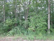 1387 Struble Road Muir MI, 48860