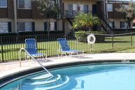 Park Pointe Apartments Tampa FL, 33614