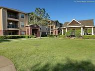 IMT at the Medical Center Apartments Houston TX, 77054