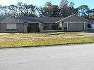 Address Not Disclosed Palm Harbor FL, 34685