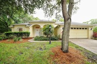 10615 Chambers Dr Tampa FL, 33626