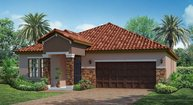 11909 Frost Aster Drive Riverview FL, 33579