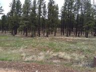 9587 Sierra Springs Way Pinetop AZ, 85935