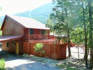 1329 Guanella Pass Road Georgetown CO, 80444