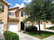 16317 Parkstone Palms Court Tampa FL, 33647