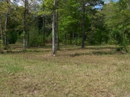 Lot 34 Ewing Ln Lot 34 Tickfaw LA, 70466