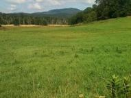 Lot 16 Otter Creek Subdivision Crawley WV, 24931