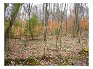99 Wooded Mountain Trail Mars Hill NC, 28754