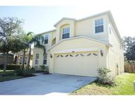 11405 Bamboo Orchid Court Riverview FL, 33578