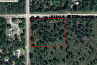 000 Walnut Avenue Bunnell FL, 32110