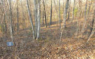 Lt 86 Rivercrest Lane Lot 86 Mineral Bluff GA, 30559