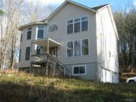 62 Old Tacy Road Swan Lake NY, 12783
