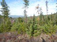 Xx Lot #1b Red Marble Rd Chewelah WA, 99109