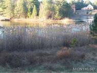 4202 Blue Waters Road Lot 12 Forestport NY, 13338