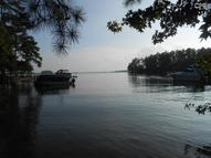 201 Mill Point Chapin SC, 29036