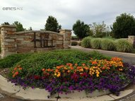 3601 Taliesin Way Fort Collins CO, 80524