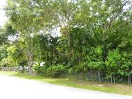 30870 Hammock Drive Unit B Big Pine Key FL, 33043