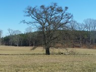 Lot 2 Stewart Dairy Rd. Fountain Inn SC, 29644