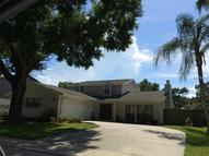 16610 Foothill Drive Tampa FL, 33624