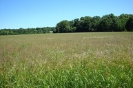 25 Acres Dix Irvington Road Dix IL, 62830