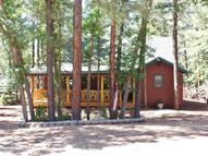 3456 Turkey Track Rd. Pinetop AZ, 85935