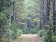 0 Chimney Rock Rd Lot 83 Waverly GA, 31565