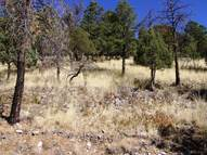 Lot 13 Stable Rd Alto NM, 88312