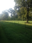 Lot 6 Frenchtown Acres Road Greenwell Springs LA, 70739